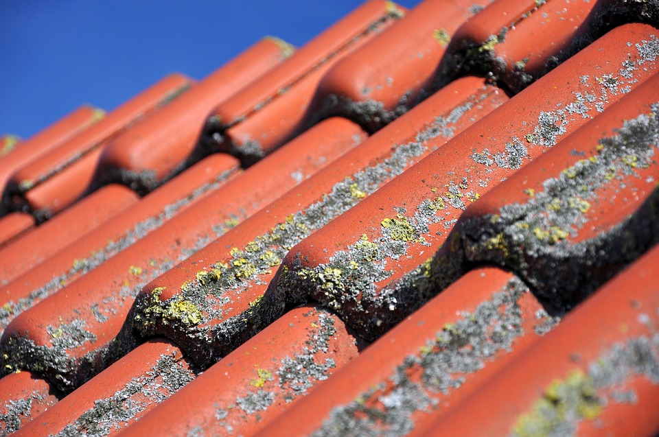 Mit Moos bewachsene Dach vor der Dachreinigung